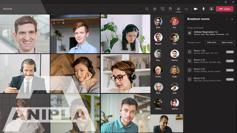 Anipla - Meeting Online